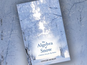 Algebra of Snow