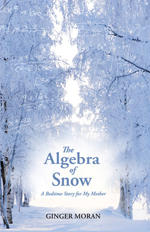 The Algebra of Snow